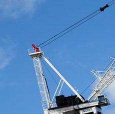 our_crane_2